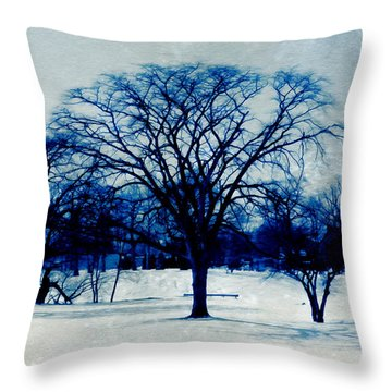 Winter Blues Throw Pillow by Shawna Rowe