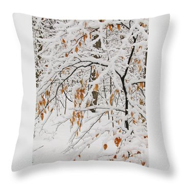 Throw Pillow featuring the photograph Winter Branches by Ann Horn