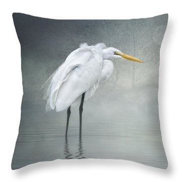 Winter Breeze Throw Pillow by Brian Tarr