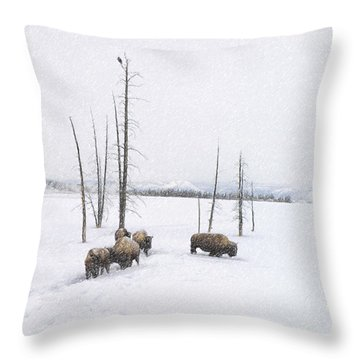 Winter Buffalo Throw Pillow