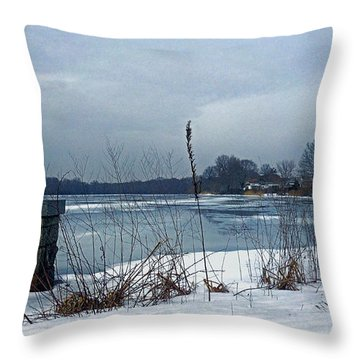 Winter By The Lake Throw Pillow by Mikki Cucuzzo