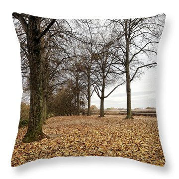Winter Calling Throw Pillow