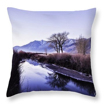 Winter Canal-2 Throw Pillow