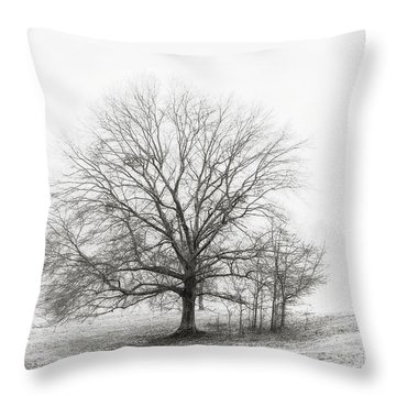 Winter Chrome Throw Pillow