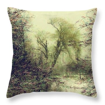 Winter Colours Throw Pillow by John Stuart Webbstock