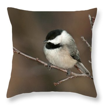 Winter Contemplation Throw Pillow by Lara Ellis