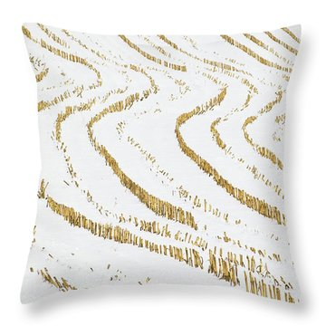 Throw Pillow featuring the photograph Winter Cornfield by Alan L Graham