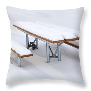 Winter Cover Throw Pillow by Mike  Dawson