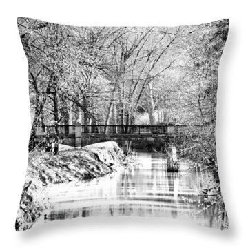 Throw Pillow featuring the photograph Winter Crossing by Lorna Rogers Photography