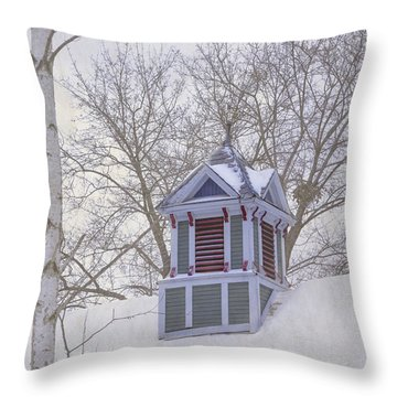 Throw Pillow featuring the photograph Winter Cupola by Tom Singleton