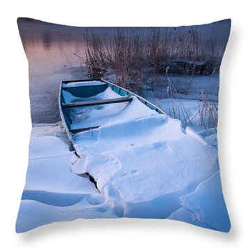 Throw Pillow featuring the photograph Winter Dawn by Davorin Mance