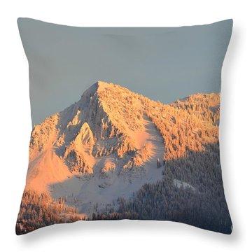 Throw Pillow featuring the photograph Winter by Dorrene BrownButterfield