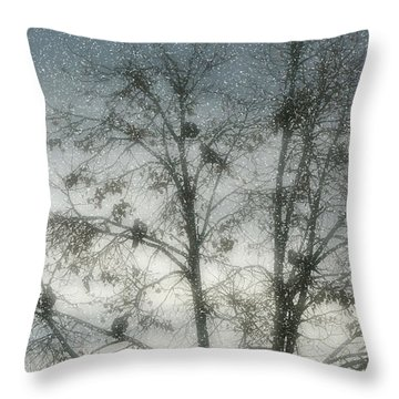 Throw Pillow featuring the photograph Winter Doves 2 by Diane Alexander