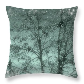 Throw Pillow featuring the photograph Winter Doves by Diane Alexander