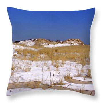 Throw Pillow featuring the photograph Winter Dunes Fire Island by Karen Silvestri