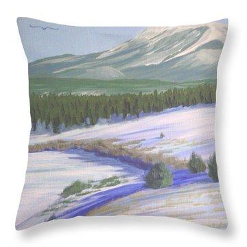 Winter Eagle At Mormon Lake Throw Pillow