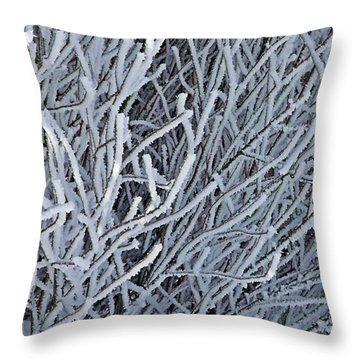 Throw Pillow featuring the photograph Winter Elegance by Christian Mattison