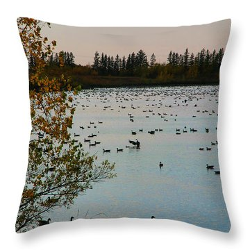 Winter Escape Gathering Throw Pillow by Teresa Zieba