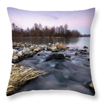 Winter Evening Throw Pillow by Davorin Mance