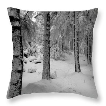 Winter Fairy Tale Forest Throw Pillow by Andreas Levi