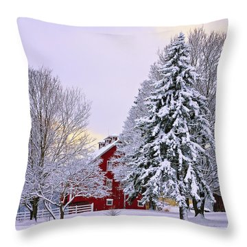 Winter Farm Scene Throw Pillow by Timothy Flanigan