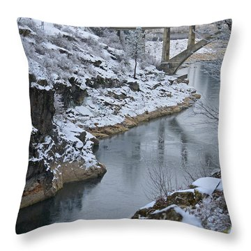 Winter Fashion Throw Pillow by Greg Patzer