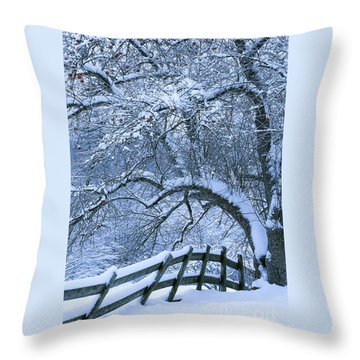 Throw Pillow featuring the photograph Winter Fence by Alan L Graham