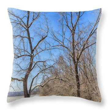 Winter Field Throw Pillow by Alan Raasch