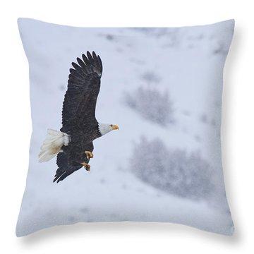 Winter Flight Throw Pillow by Mike  Dawson