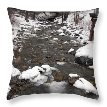 Winter Flow Throw Pillow