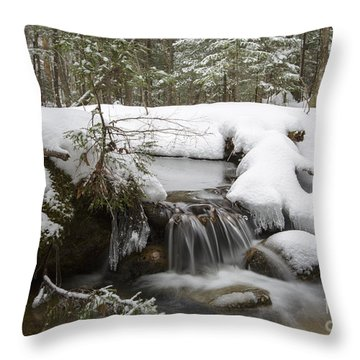 Winter Forest - Lincoln New Hampshire Usa Throw Pillow by Erin Paul Donovan