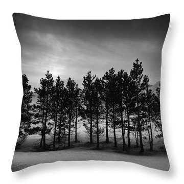 Winter Forest Throw Pillow by Frodi Brinks