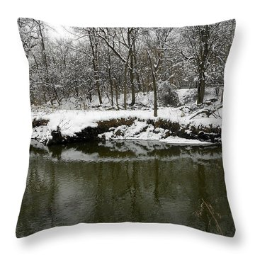 Winter Forest Series 2 Throw Pillow