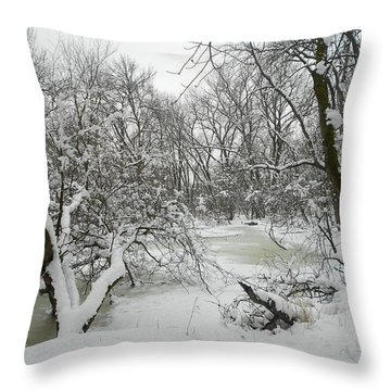 Winter Forest Series 3 Throw Pillow