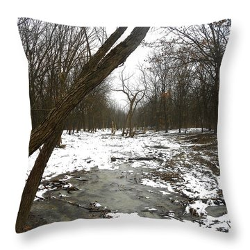 Winter Forest Series Throw Pillow