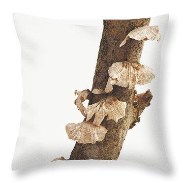 Winter Fungi Throw Pillow