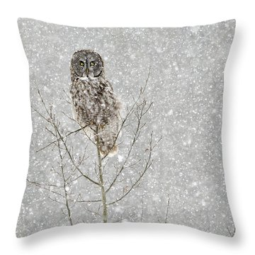 Winter Ghost Throw Pillow