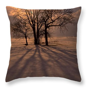 Winter Glory Throw Pillow by Tim Good