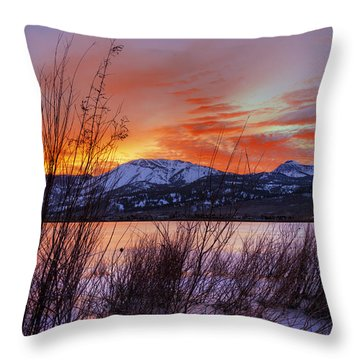 Winter Glow Throw Pillow by Dianne Phelps