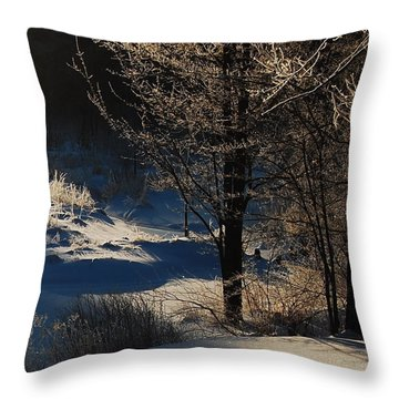 Throw Pillow featuring the photograph Winter Glow by Mim White