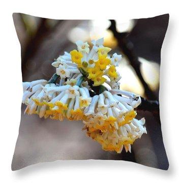 Winter Gold Throw Pillow by Maria Urso