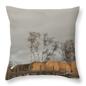 Throw Pillow featuring the photograph Winter Gold by Sandi Mikuse