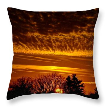 Winter Gold Throw Pillow