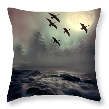 Winter Golden Hour Throw Pillow