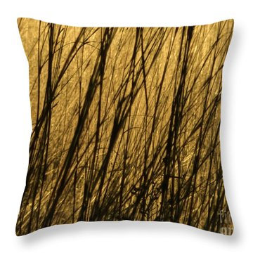 Winter Grass Throw Pillow by Tim Good