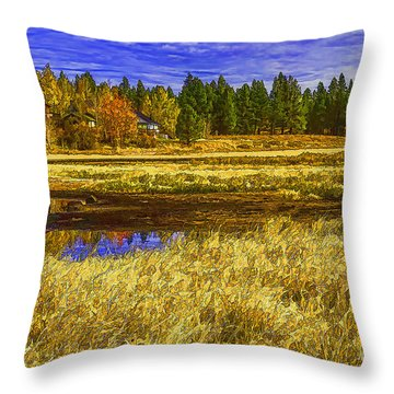 Winter Grasses And Low Lying Wetlands-2 Throw Pillow