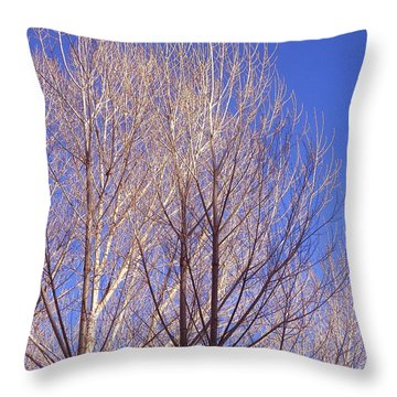 Winter High Node Throw Pillow