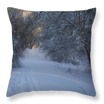Winter Hike Throw Pillow by Andrew Pacheco