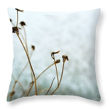 Winter Impressions Ia Throw Pillow
