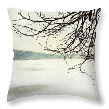 Winter Impressions IIb Throw Pillow